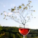 natural no hangover wine