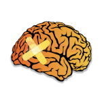 alcohol blackout and the brain