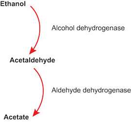 how to make aldehyde tertiary alcohol