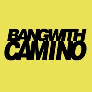 Bang With Camino Testimonial